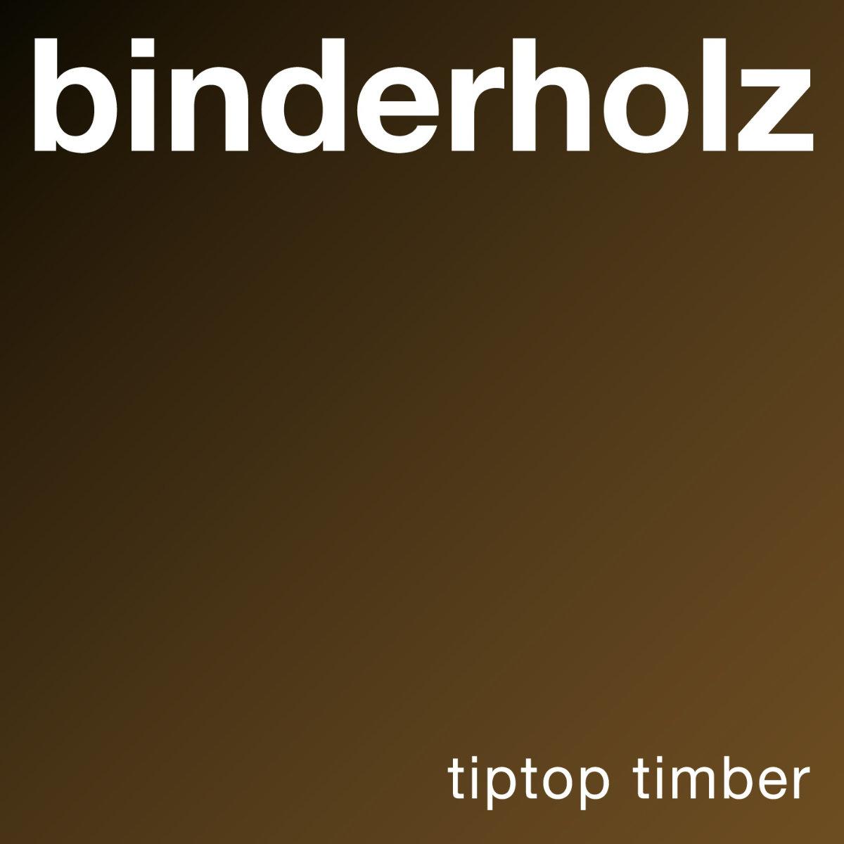 Binderholz Logo